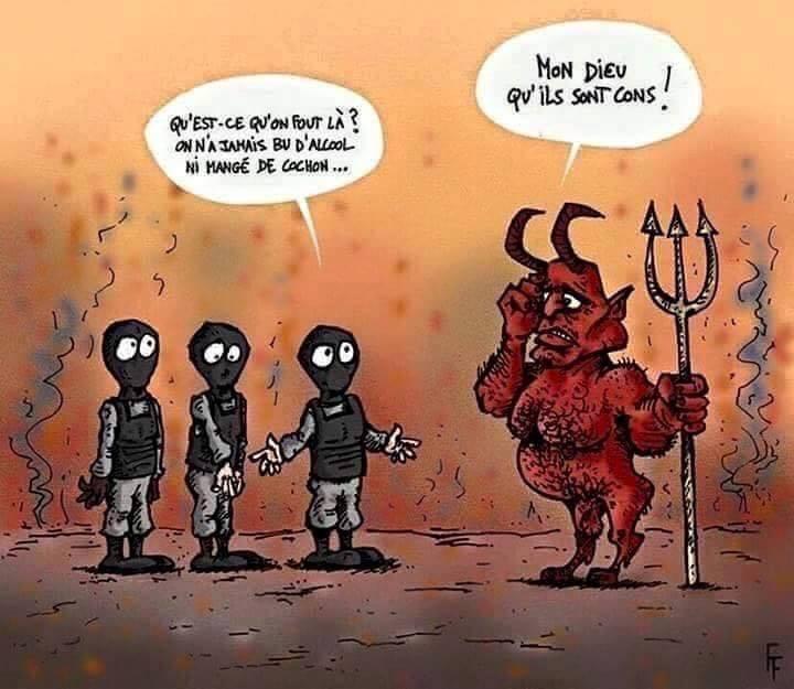 Humour en image - Page 21 11223610