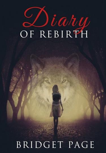 Diary of Rebirth - Tome 1 : Apprivoiser de Bridget Page Diary_10