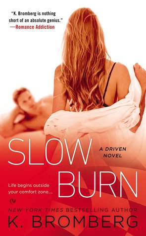 Driven - Saison 5 : Slow Flame de K. Bromberg  Snow_b10