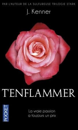 Te désirer - Tome 2 : T'enflammer de Julie Kenner T_enfl10