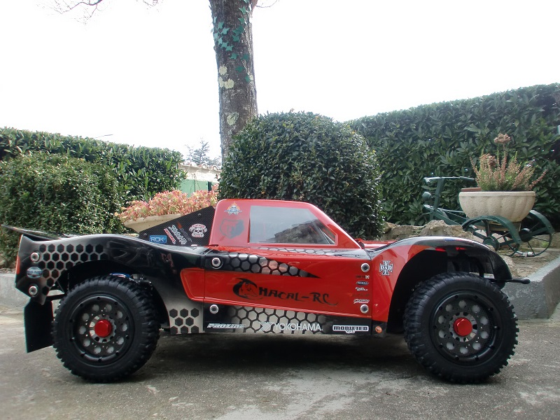 GRIZZLY LOSI by BajaBug ! ( OPTIONNITE ) - Page 3 Cimg2326