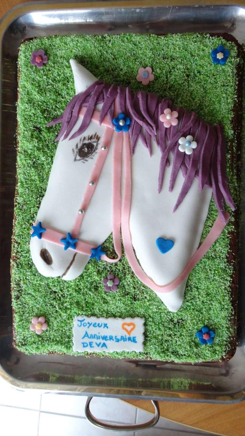 cheval, zèbre et licorne - Page 23 Dsc01515