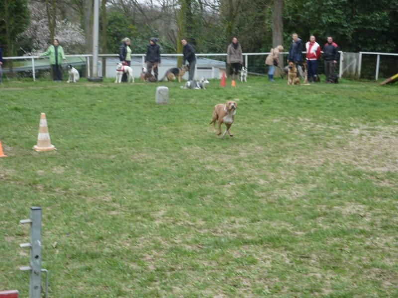 photos du dimanche 13 mars 2011 P1010621