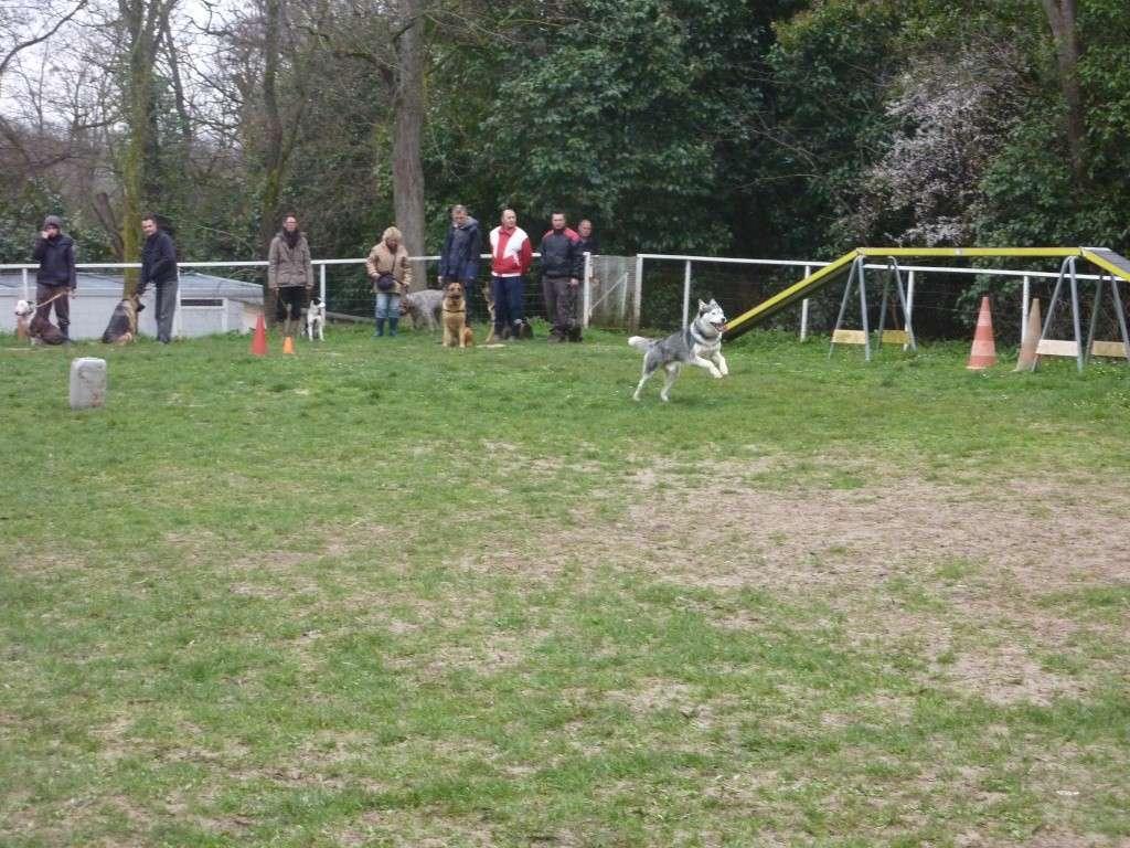 photos du dimanche 13 mars 2011 P1010622
