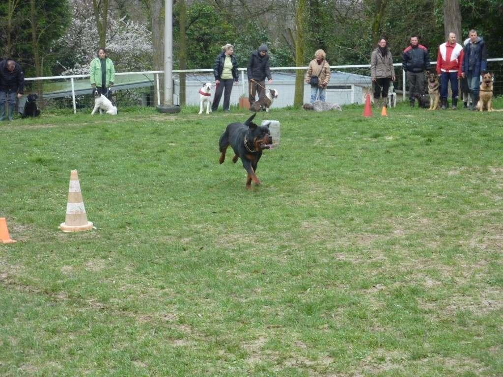 photos du dimanche 13 mars 2011 P1010623
