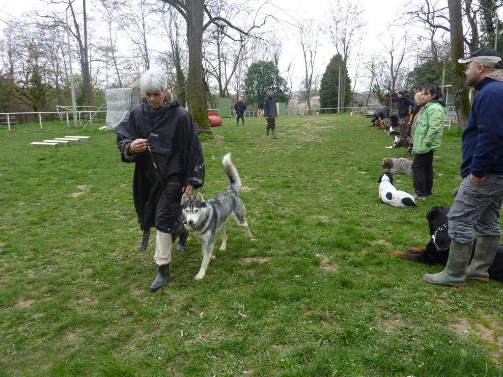 photos du dimanche 13 mars 2011 P1010625