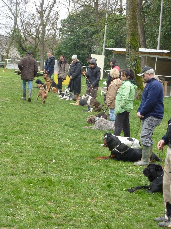 photos du dimanche 13 mars 2011 P1010629