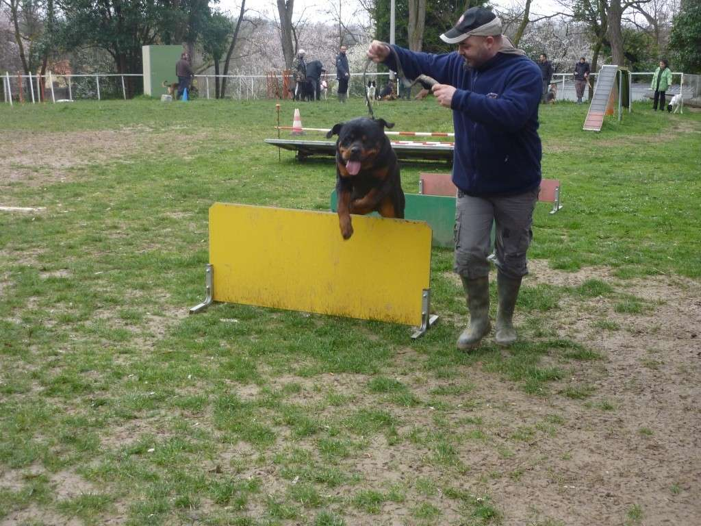 photos du dimanche 13 mars 2011 P1010631