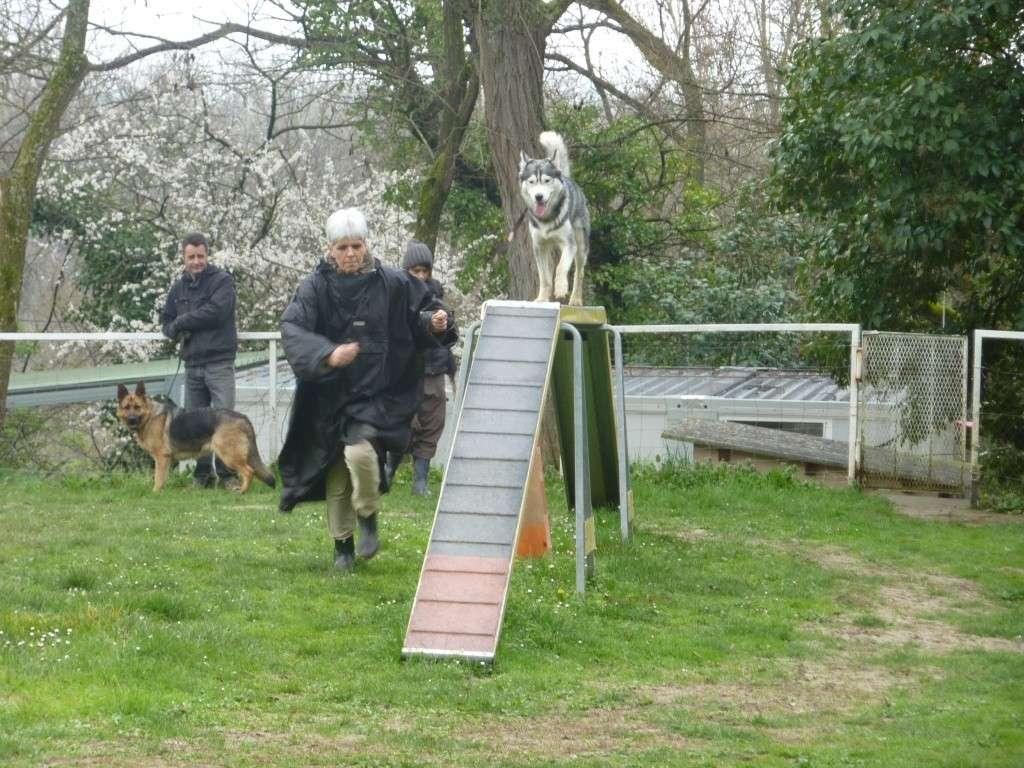 photos du dimanche 13 mars 2011 P1010633