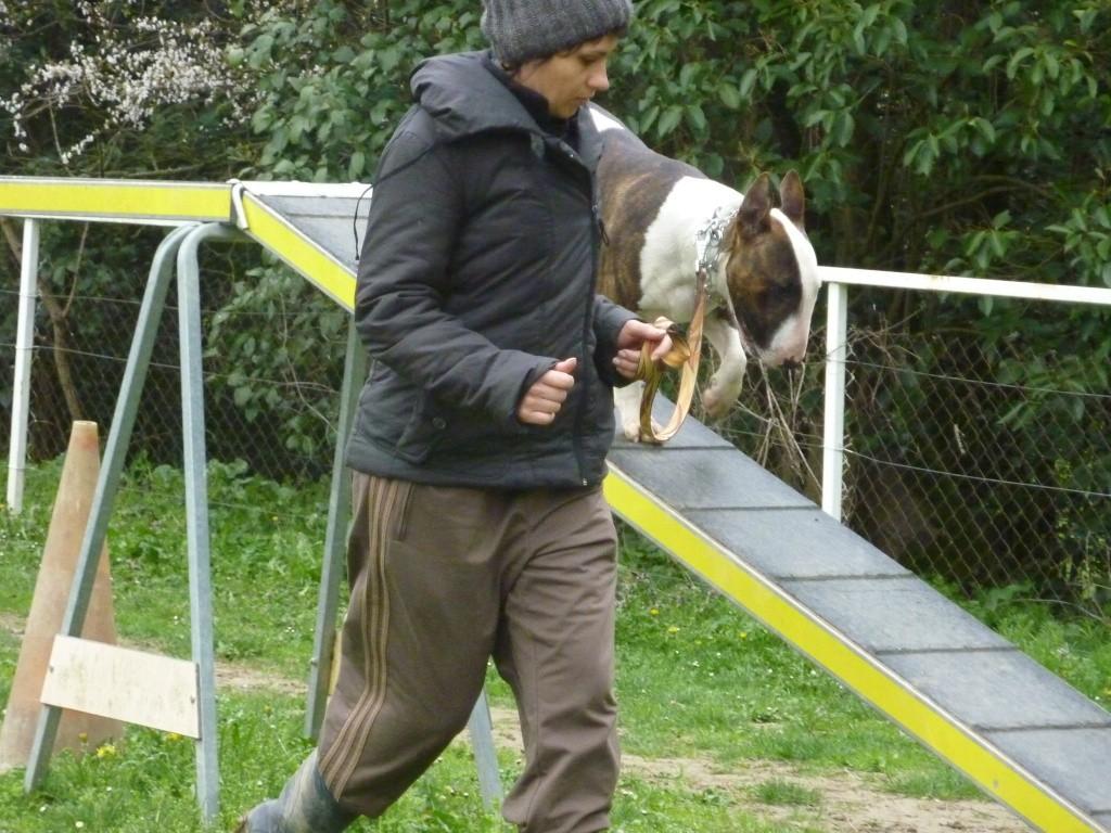 photos du dimanche 13 mars 2011 P1010634