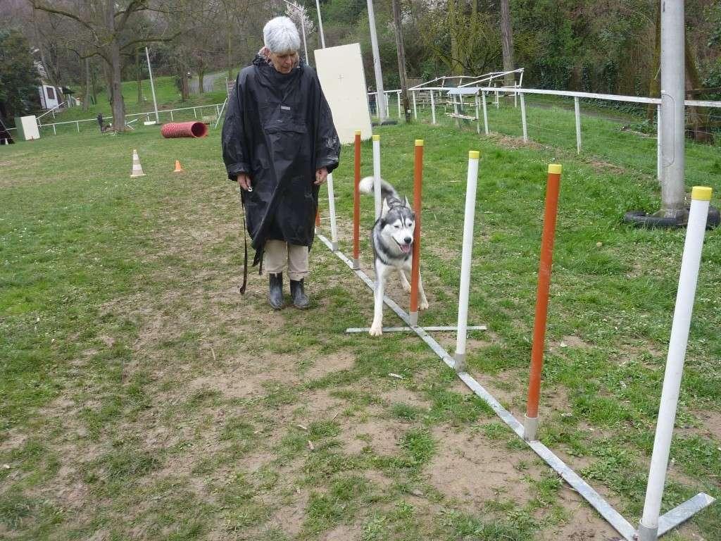 photos du dimanche 13 mars 2011 P1010635