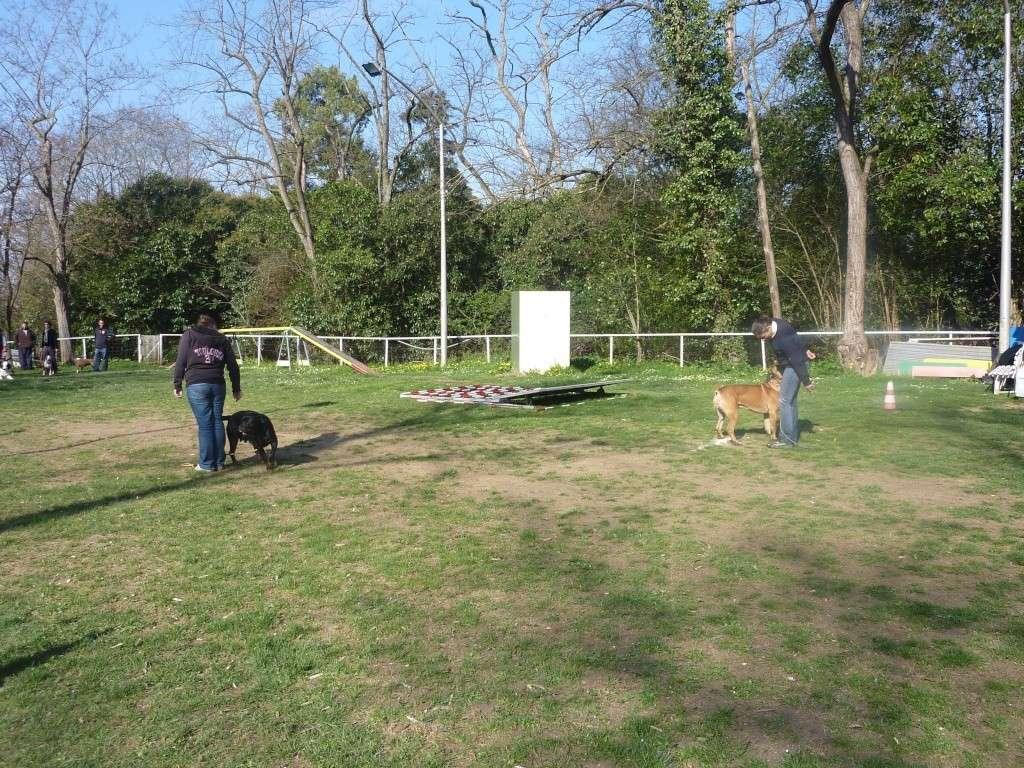 photos du dimanche 20 mars 2011 P1010711