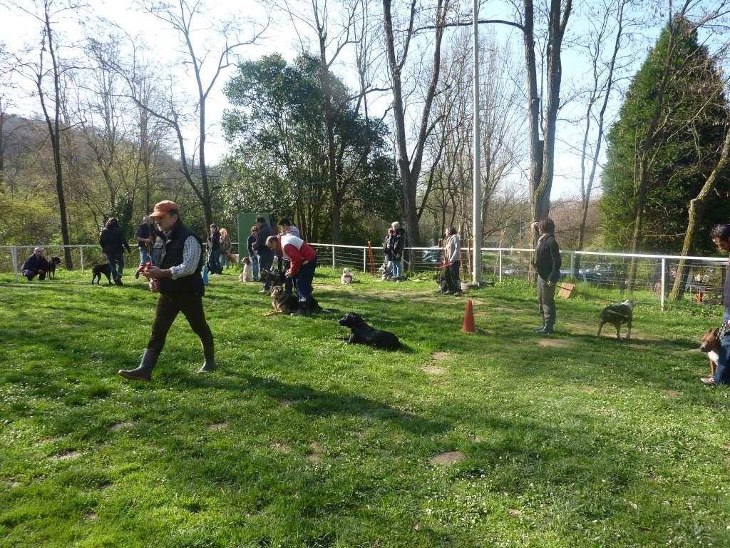 photos du dimanche 20 mars 2011 P1010712