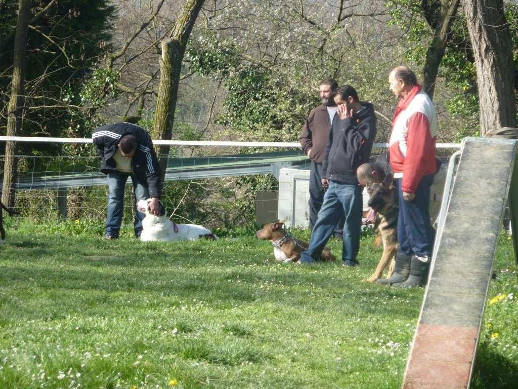 photos du dimanche 20 mars 2011 P1010714