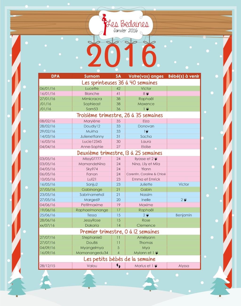 Les couveuses su 04 au 10-01-2016 Janvie13