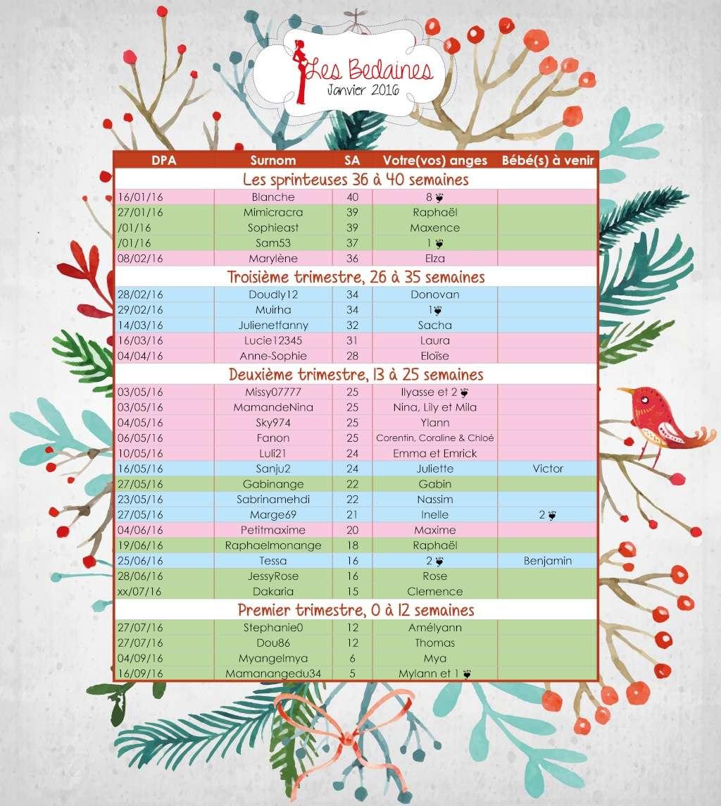 Les couveuses su 11 au 17-01-2016  Janvie15