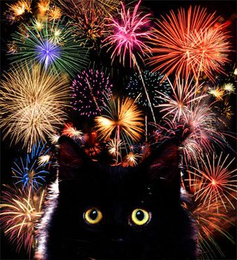 Bonne année !!!....on l'espère... - Page 2 Cxkfng10