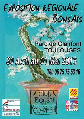 Toulouges (66) le 30 avril et 1 mai 2016 16043010