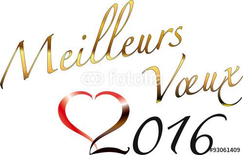 bonne année 2016 500_f_10