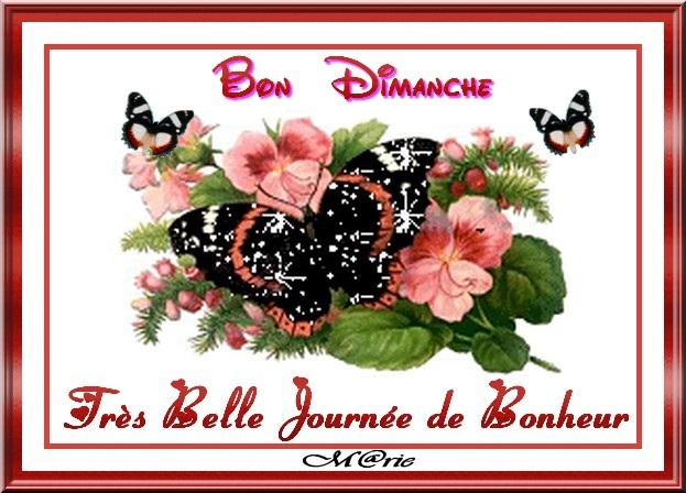 bonjour bonsoir du mois de février - Page 3 11800410