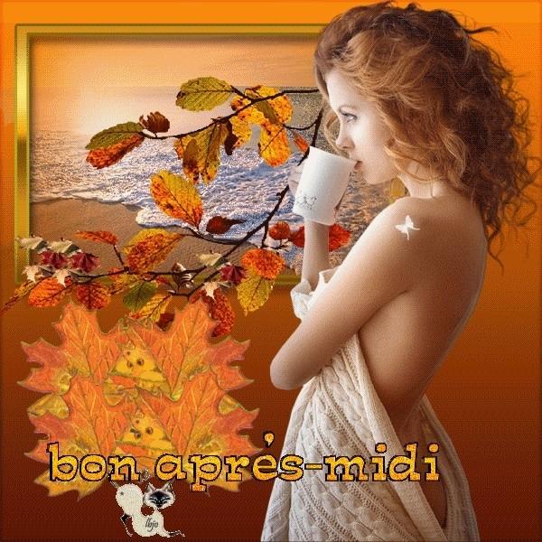 Bonjour / bonsoir de décembre - Page 3 47789d10