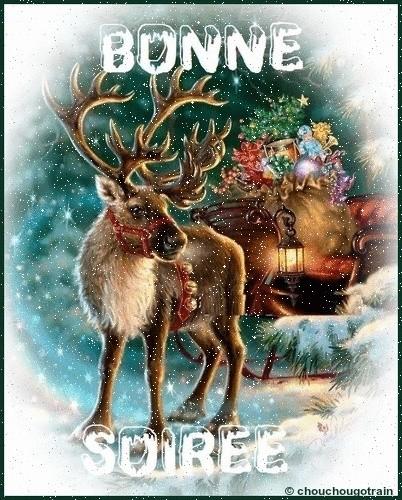 Bonjour / bonsoir de décembre - Page 5 7ee86511