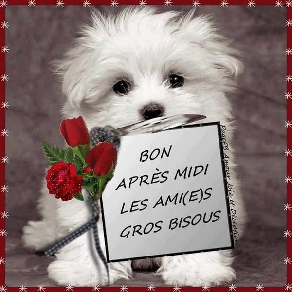 bonjour;bonsoir du mois de Janvier - Page 2 Da422f10