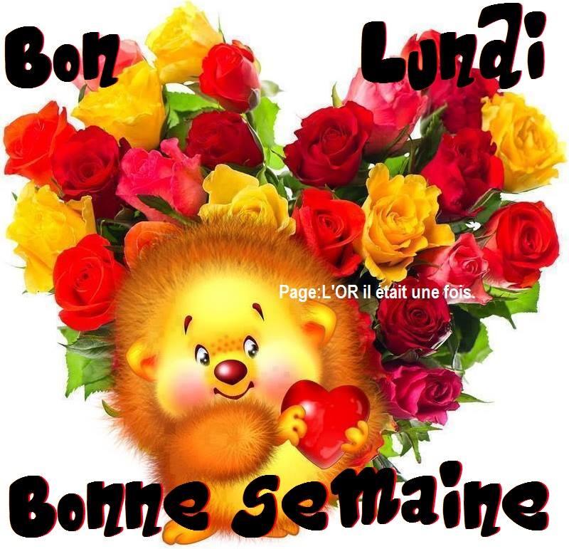 bonjour bonsoir du mois de février Lundi_15