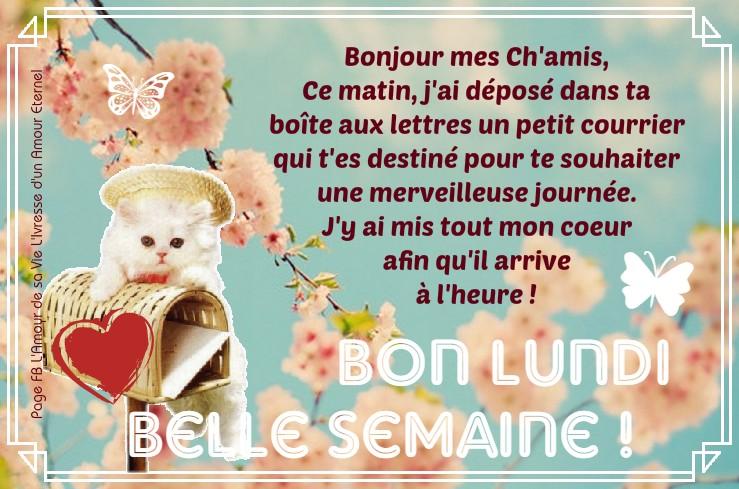 bonjour bonsoir du mois de février - Page 3 Lundi_16