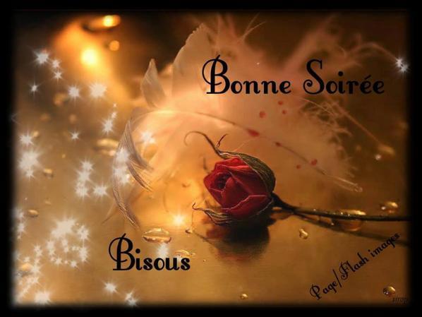 Bonjour / bonsoir de décembre - Page 2 Profil10