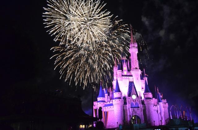 Mick&Jeff : A whole new (Disney) World ! -- WDW&USO -- Août 2014 - Page 11 Dsc_0211