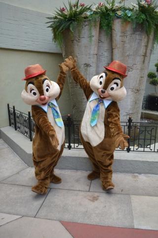 Mick&Jeff : A whole new (Disney) World ! -- WDW&USO -- Août 2014 - Page 11 Dsc_0716