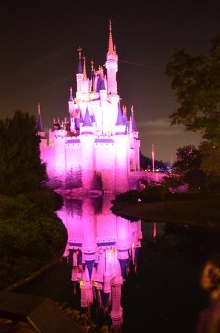 Mick&Jeff : A whole new (Disney) World ! -- WDW&USO -- Août 2014 - Page 11 Dsc_0924