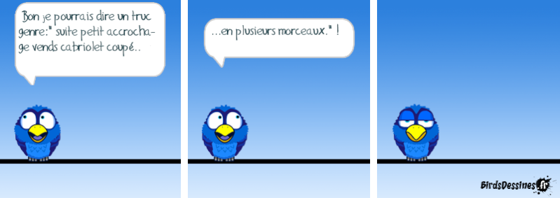 Quelques Birds ? 14533610