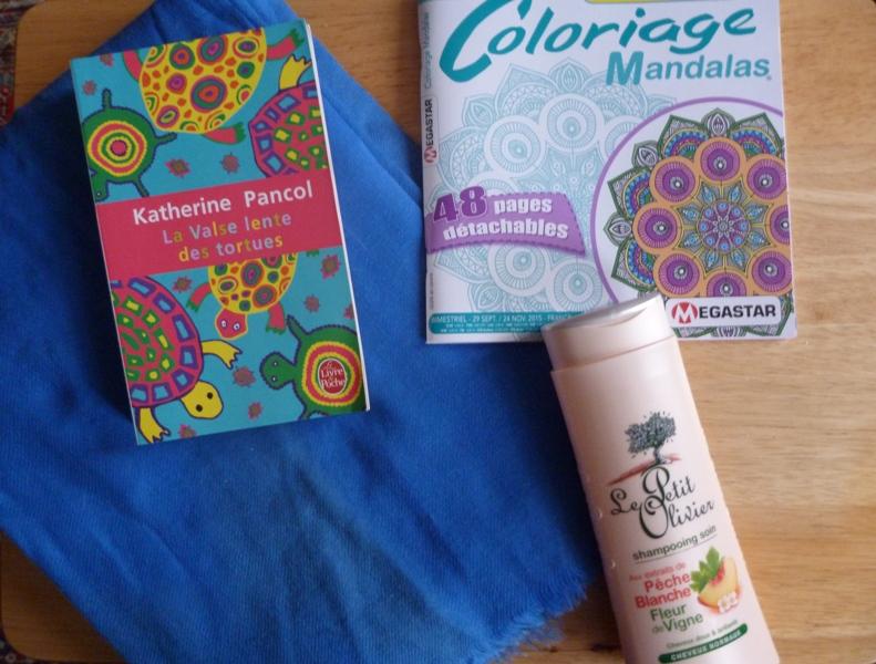 Photos - SWAP Un kilo de couleurs [3/3 photos postées] P1070618