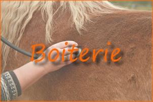 Visites et Soins aux chevaux de Tamie Feelds 05_bmp13