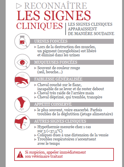 Myopathie - Page 3 6_dif-10