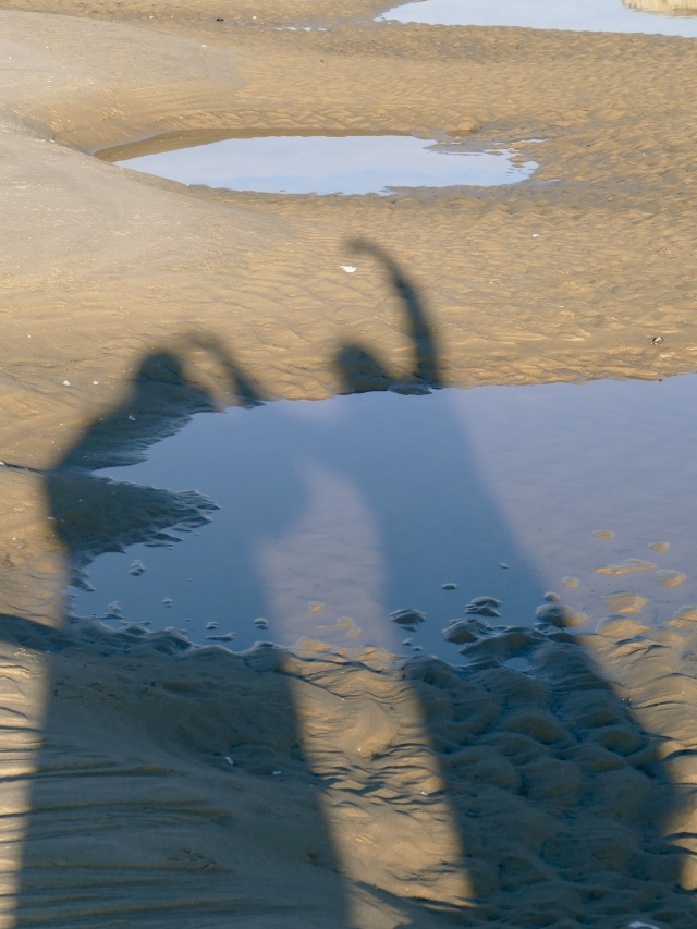 Reflet de falaise P1040911