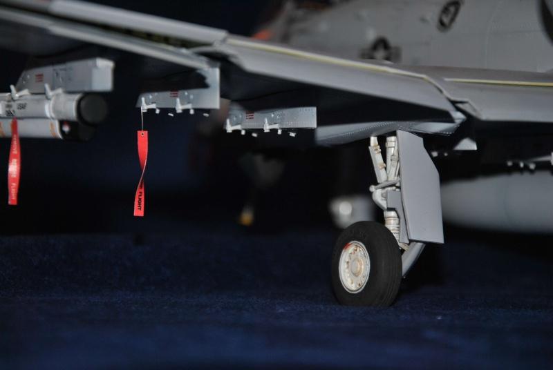 A-10 Thunderboldt II Trompette 1/32 Dsc_1522
