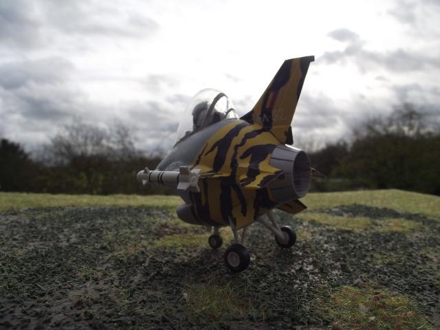 F-16 EGG-PLANE DES F.A.B by INESS & PAPA Dscf5748