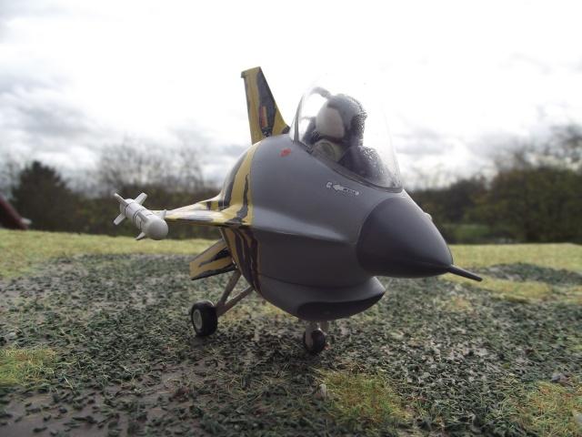 F-16 EGG-PLANE DES F.A.B by INESS & PAPA Dscf5749