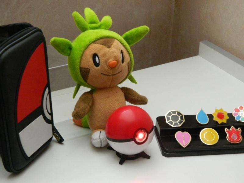 [Nintendo] L'univers Pokémon - Page 4 Dscn7310