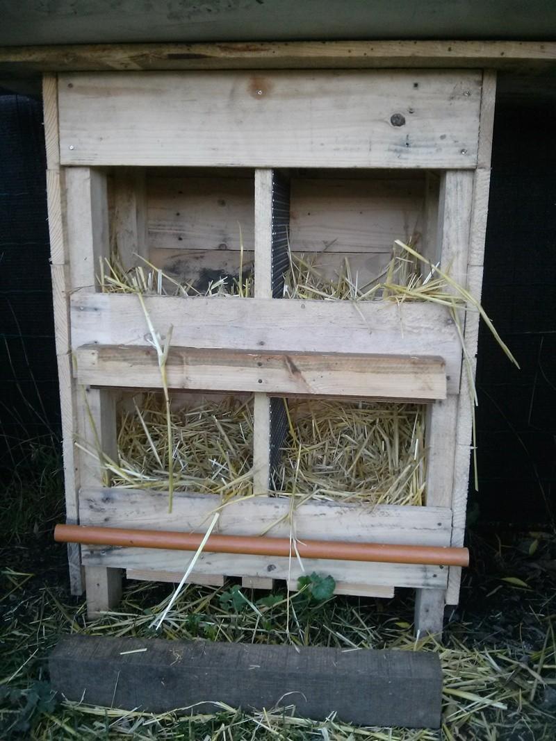 Un pondoir fabrication maison Pondoi11