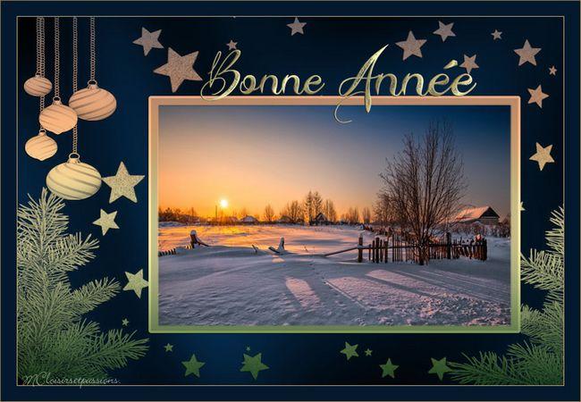 Pour la nouvelle Année ( sans la date)  Bonne_11