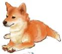 Mikio Shigemori 13955610