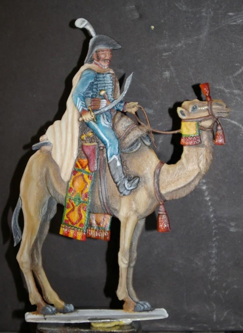 officier régiment des dromadaires en Egypte  GLORIOUS EMPIRE 54 MM Dro_0012