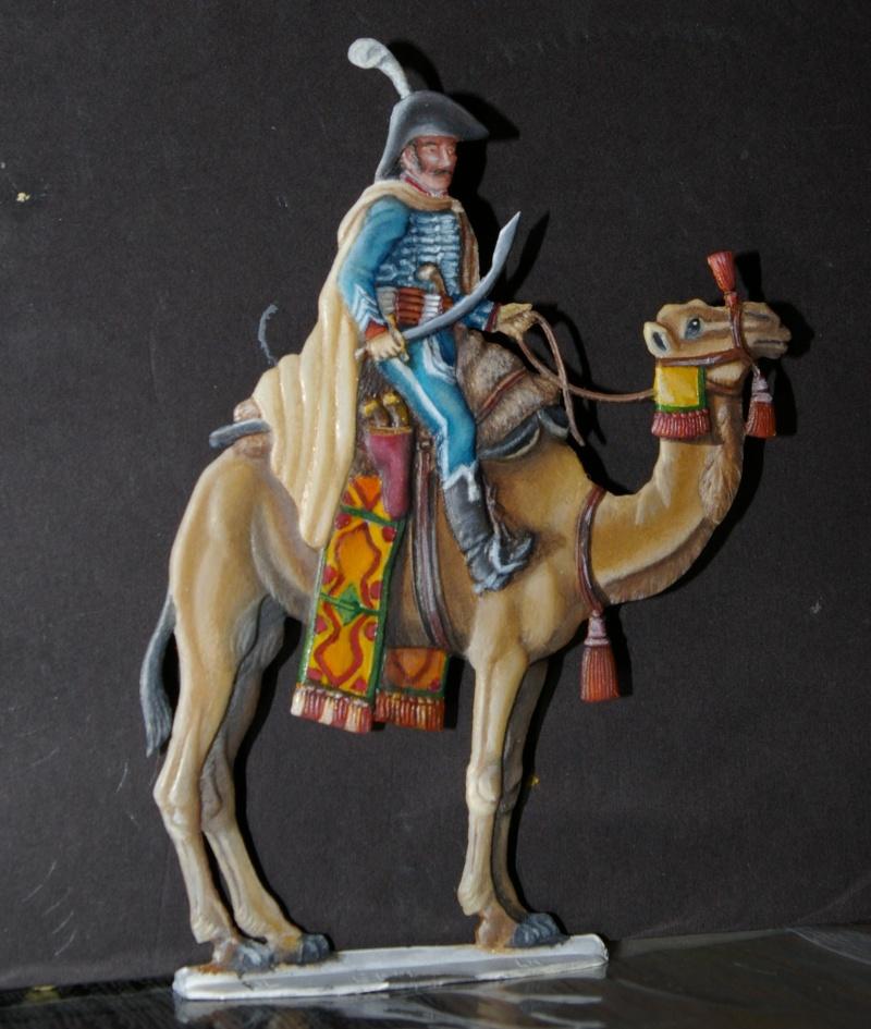 officier régiment des dromadaires en Egypte  GLORIOUS EMPIRE 54 MM Dro_0019