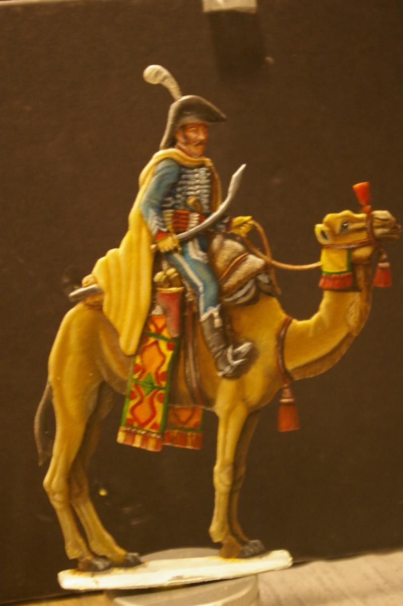 officier régiment des dromadaires en Egypte  GLORIOUS EMPIRE 54 MM Dro_0025