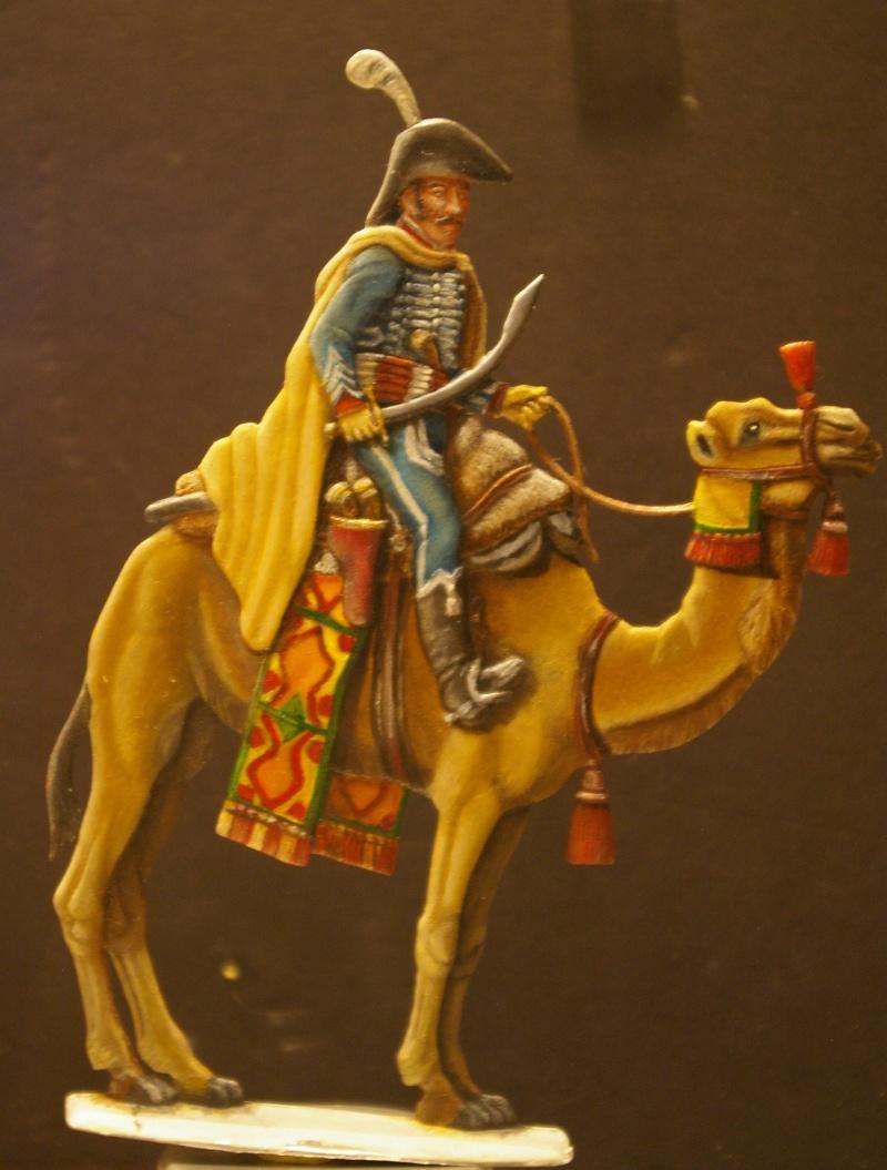 officier régiment des dromadaires en Egypte  GLORIOUS EMPIRE 54 MM Dro_0026