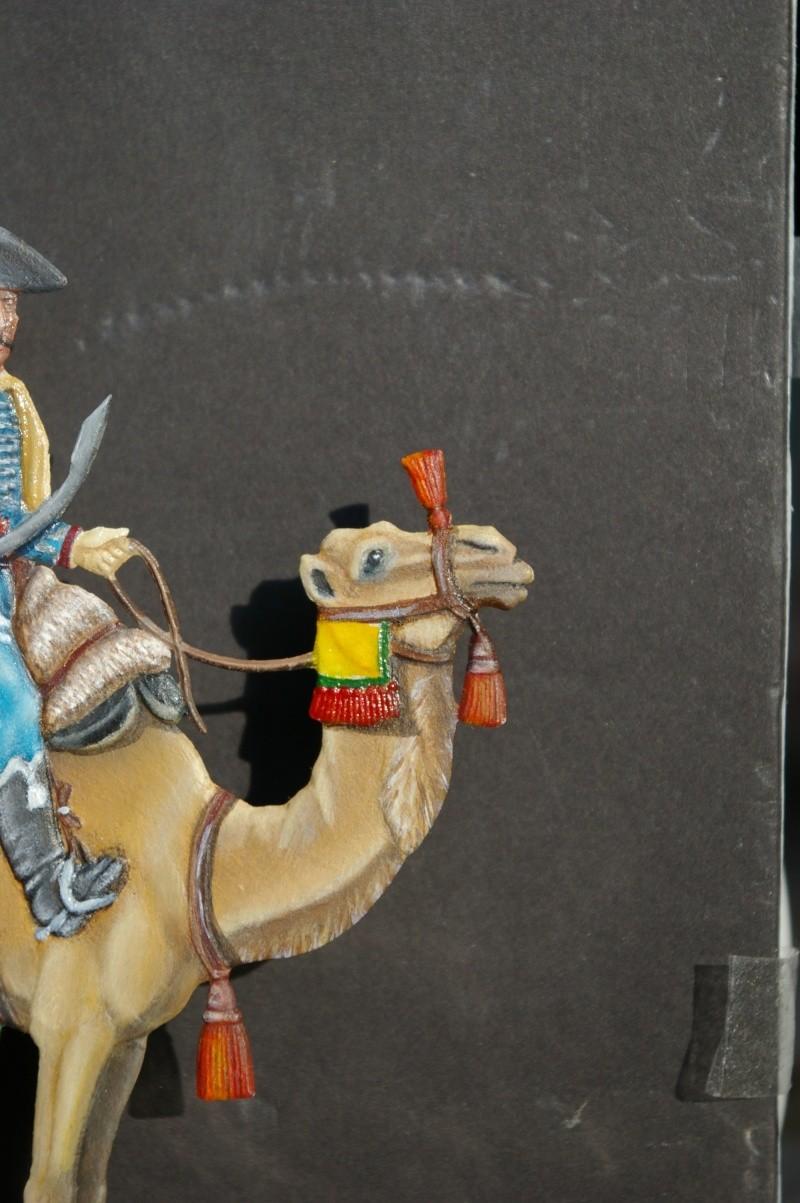 officier régiment des dromadaires en Egypte  GLORIOUS EMPIRE 54 MM Drom_039